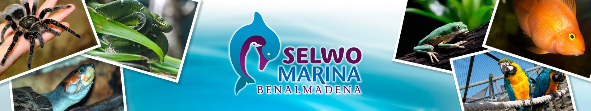 Selwo Marina en Benalmádena