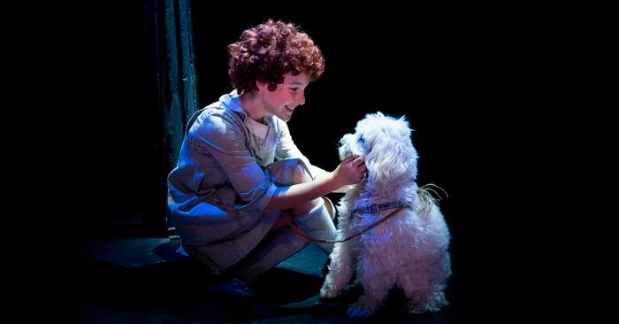 Annie, El musical