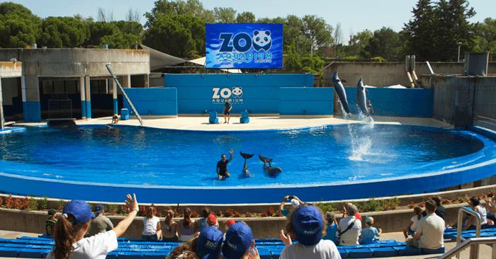 Zoo-Aquarium de Madrid